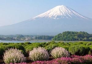日本を訪れる中国人観光客に、「3つの変化」が出始めている! 買い物しない人まで出現=中国メディア