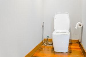 かねてから噂を耳にしていた温水洗浄便座を「ついに体験した!」=中国