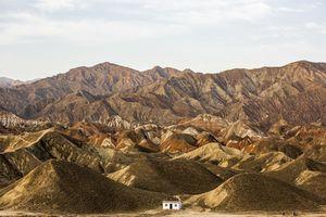甘粛省の荒れた山に、12年かけて植樹し続けた日本人 感動し、敬意を抱いた=中国メディア