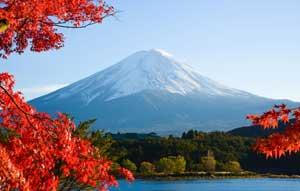 悔しい!日本は「天国のような国」ではなく、日本にだって欠点はある=中国