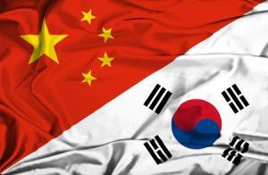 韓国がWTOに提訴しても無駄だ! 中国政府の「限韓令」などない=中国報道