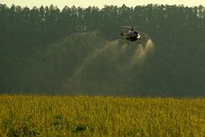 これを見れば、日本の農村や農業がいかにスゴいかが分かる! =中国メディア