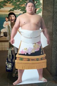 市川紗椰が語る大相撲愛 「豪栄道の優勝を見るために予定より早く海外から帰国しました(笑)」