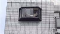 マンション6階から転落か、京都・舞鶴で1歳男児死亡