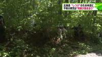 北海道小2男児不明、しつけのため林道に置き去り