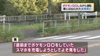 「ポケモンGO」で交通死亡事故、全国で2人目 愛知・春日井市