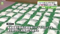 輸入コンテナからコカイン95キロ押収