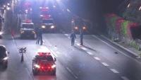 東名高速に成人男性の遺体か、ひき逃げで捜査