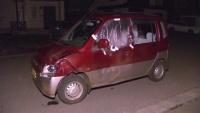 クマと乗用車が衝突、運転の男性「反対車線まではじかれた」