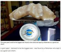 世界最大の真珠がフィリピンで発見される その価値100億円!