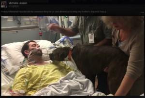 愛犬、33歳ご主人と最期のお別れを病室で(出典:https://www.facebook.com/michelle.jessen.7)