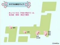 名古屋や岐阜で桜開花 全国開花状況