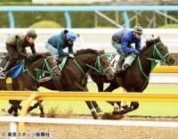 【青葉賞】ヴァンキッシュラン ラスト11・8秒で併入に内田博「本当にいい馬」