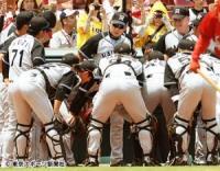 金本阪神 分裂の危機!投手VS野手の溝にピリピリ