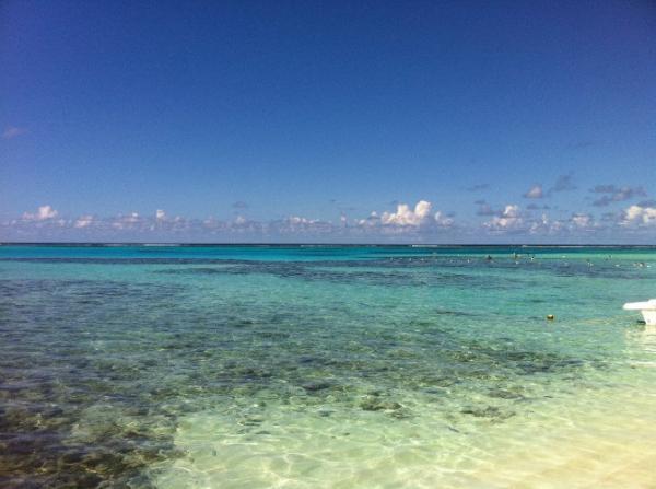 島国パラオに中国人客殺到、現地に戸惑い・・政府が渡航阻止の対策も