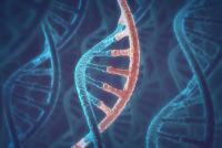 生活習慣病を未然に防ぐ? 遺伝子検査のメリットとデメリット