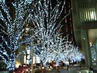 クリスマスのイルミネーションにも温暖化の影響