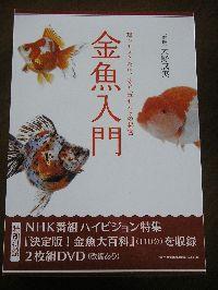 ディープすぎる金魚の世界をDVDで