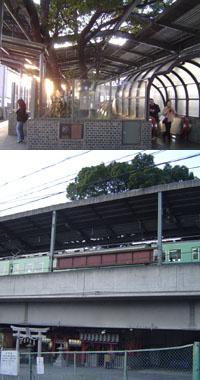 大木がホームを突き抜けた高架駅