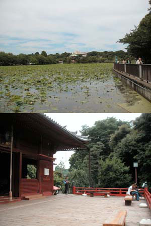 不忍池を琵琶湖のうつしにした江戸幕府のメンツ