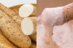 パワフル食材! 山芋を食べてデトックス&アンチエイジング