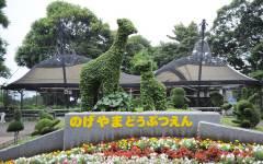 無料で動物が見れちゃう? 「野毛山動物園」に行こう!