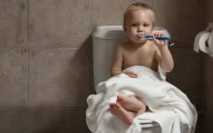 男性はトイレで立つ?座る?世界のトイレ事情2