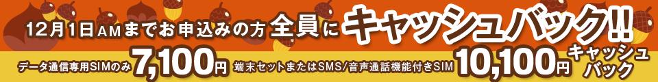 11月のキャッシュバックキャンペーン | 12月1日までのお申込みの方全員にキャッシュバック!!