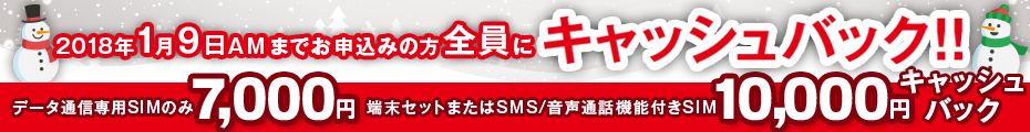 12月のキャッシュバックキャンペーン | 1月9日までのお申込みの方全員にキャッシュバック!!