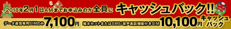 新春キャッシュバックキャンペーン | 2月1日までのお申込みの方全員にキャッシュバック!!