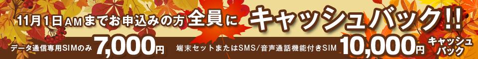 秋のキャッシュバックキャンペーン | 11月1日までのお申込みの方全員にキャッシュバック!!