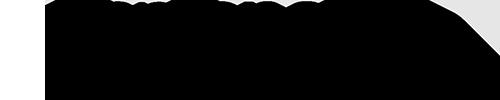 エキサイトモバイル ASUS ZenFone 6 (256GB) logo