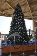 驚きの南半球のメリークリスマス