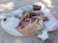 【謎】空から落ちてきた7kgの冷凍豚肉入りビニール袋が屋根を直撃する事案が発生