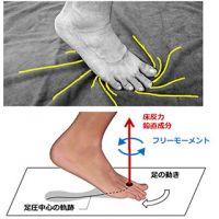 東京農工大、下肢に生じる捻じれストレスが高まってしまう歩き方を解明