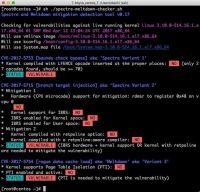 Linuxが脆弱性「Spectre」「Meltdown」に対応済みか調べる方法