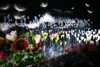 真冬にお花見をしてきた - 「FLOWERS by NAKED」の見どころはココ!