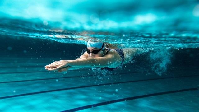水泳がもたらすダイエット効果 (2020年11月29日)