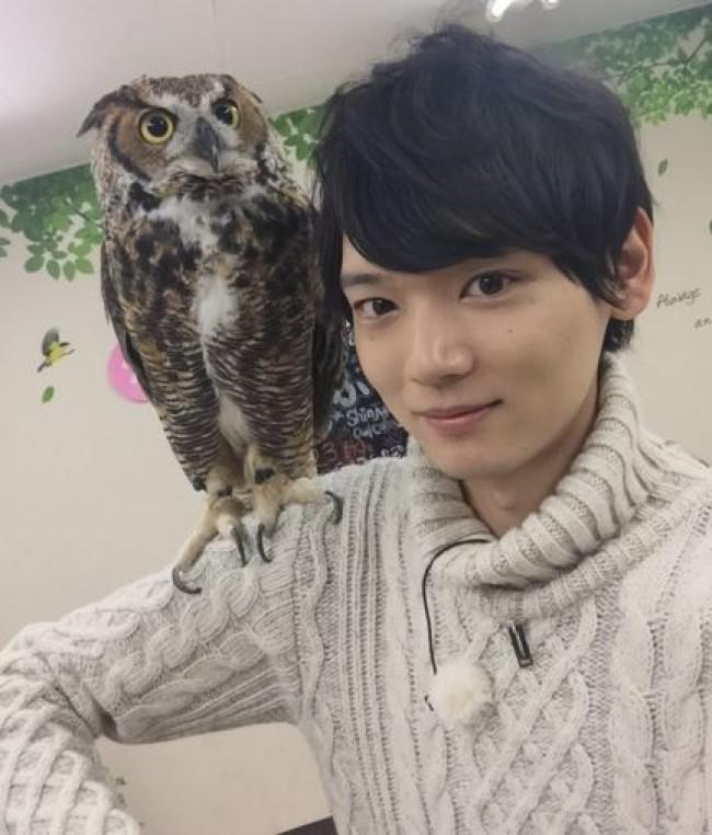 古川雄輝、フクロウカフェ体験に笑顔 癒され過ぎるファン続出