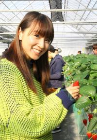 鈴木亜美栽培のイチゴ「いち~ゴ」販売を開始
