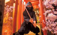 【男の隠れ家】海外からの観光客にも大人気「歌舞伎町で忍術修行」