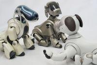 ソニーマニアの新aibo購入レビュー。旧AIBOオーナーも一発で落ちる可愛さ、超ハイテクに生まれ変わった犬型ロボット