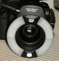 円形ストロボで立体的な写真を撮ろう
