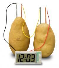 """エコの時代に""""ジャガイモに挿して動かす時計"""""""