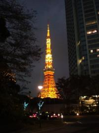 スカイツリー開業後、東京タワーの人気はどうなった?