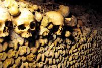 600万体の遺骨が眠る地下で騒ぐ秘密パーティーへ行ってきた