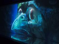 水木しげるの妖怪が水族館に出現!ぞくっとする「水の妖怪トンネル」に行ってみた