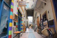 街じゅう猫だらけ!モロッコの世界遺産の街・エッサウィラが猫天国であることが判明