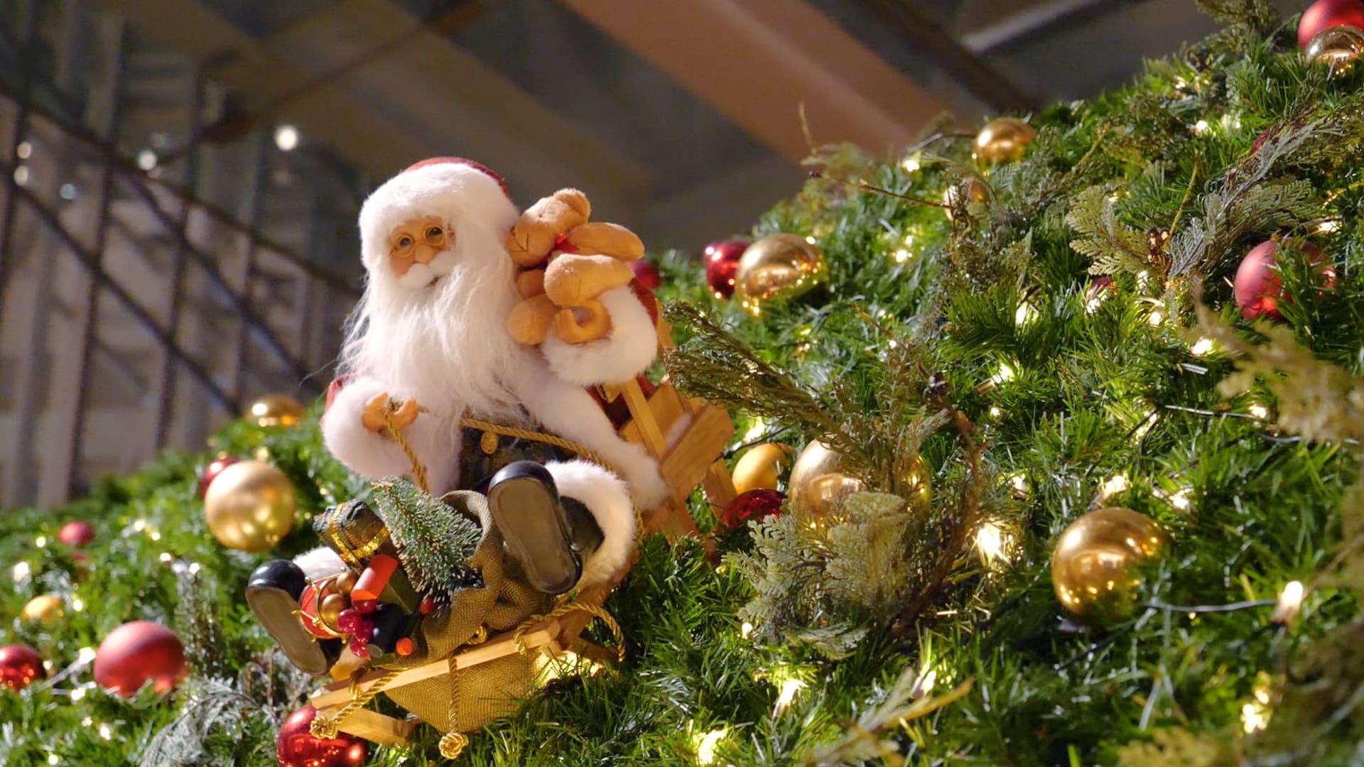 六本木 クリスマスイベント イルミネーション2018 おすすめ情報 2018年12月18日 エキサイトニュース