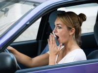 事故を起こしかけた母親、車から出てきたものに絶句